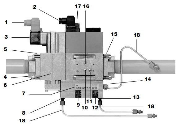 Overview DMV-VEF