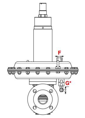 dimensiuni FRM - 2