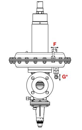 dimensiuni FRM SAV - 2